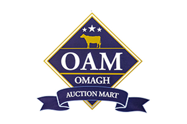 Omagh Auction Mart
